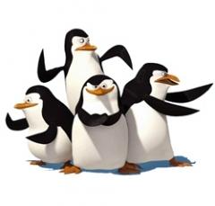 Pinguini di Madagascar