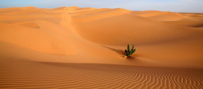 Deserto mauritania