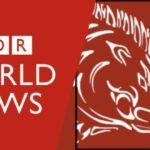 wildboar news