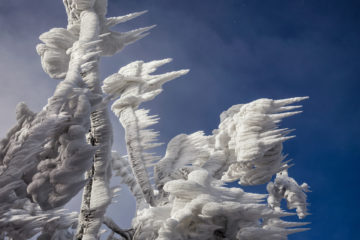 Marko-Korosec-magnifiques-formation-de-glace-du-mont-javornik-4