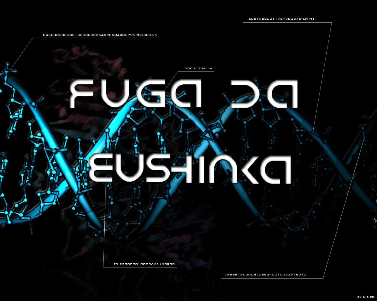 Musha_Shugyo_Fuga_da_EuShinka