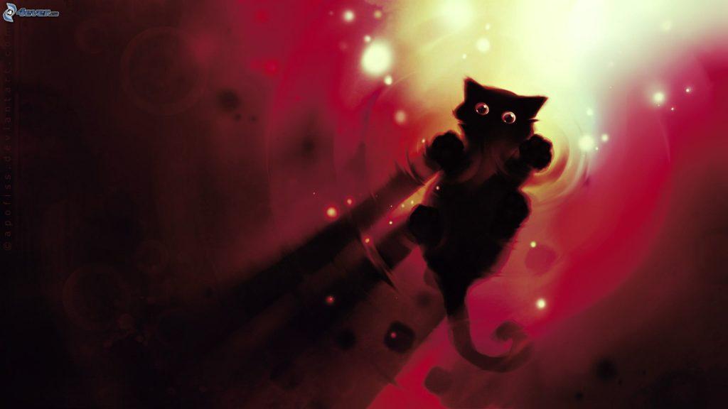 Gatto nero su acque di superficie