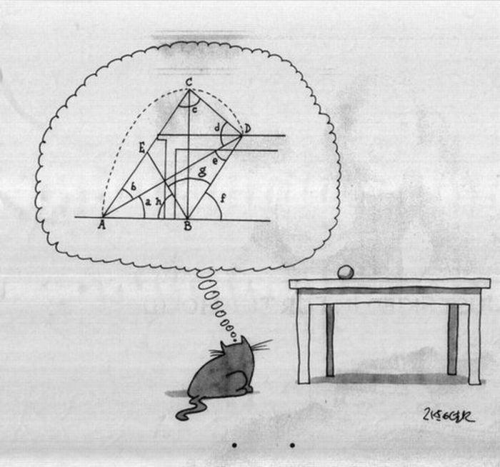 calcoli complessi